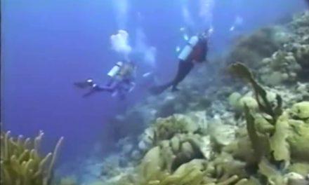Fuhikubo ta presentá: Sport Diver