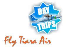 Fly Tiara